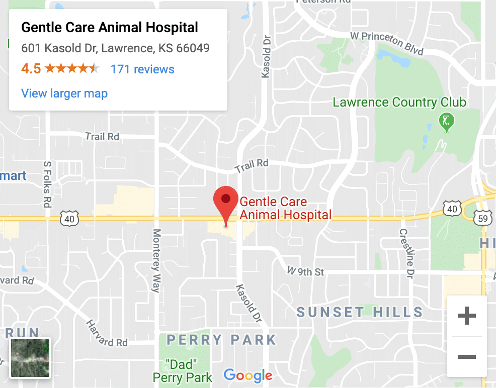 Veterinarian Lawrence KS